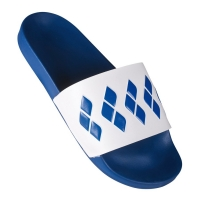 СЛАНЦЫ ARENA TEAM STRIPE SLIDE (002111)