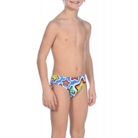 ARENA FROLIC JR BRIEF (002361)